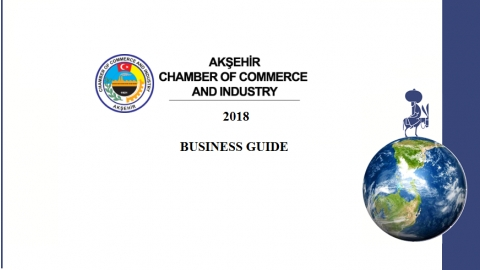 BUSINESS GUIDE 2018